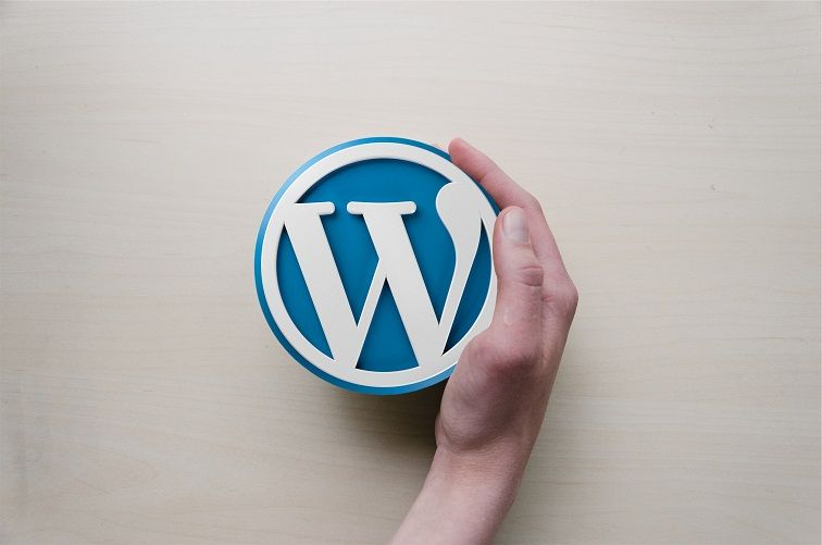Best WordPress Plugins for your Website
